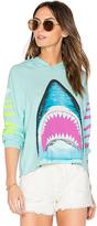 Lauren Moshi Oceana Bright Shark Pullover in Mint