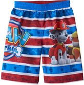Toddler Boy Paw Patrol Chase, Marshall & Rubble Striped Swim Trunks