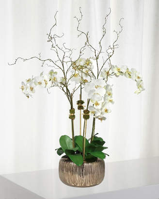 Diane James Orchid Arrangement in Empire Bowl