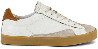 Sam Edelman Prima Sneaker