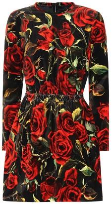 Dolce & Gabbana Floral-printed velvet minidress