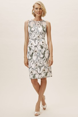 Adrianna Papell Gwyn Dress
