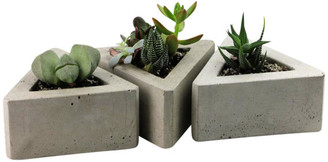 Rough Fusion Triangular Concrete Pots, Set of 3, Dark Gray