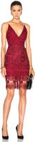 Nicholas Mix Lace Dress
