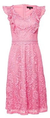 Dorothy Perkins Womens Pink Lace Taylor Dress, Pink