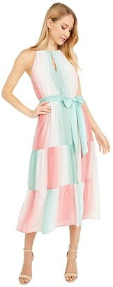 Parker Leonora Dress (Ombre Stripe) Women's Clothing