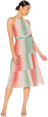 Parker Leonora Dress