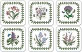 Portmeirion Botanic Garden Set of 6 Coasters