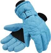 ANDORRA Premium Women's Waterproof Quilted Thinsulate Insulating Ski Gloves,M