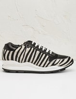 Opening Ceremony Black Multi Zebra Clssc OC Sneakers