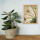 Graham and Green Framed Rectangular Abstract Leaves Print