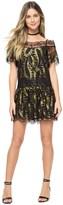 Juicy Couture Petrel Lurex Lace Dress