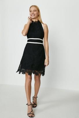 Coast Mono Lace Mini Dress