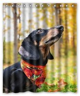 "Dachshund Hunting Dog Background Waterproof Shower Curtain/Bath Curtain-Size: 60"" x 72"""