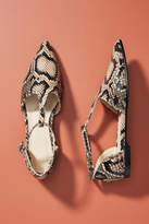 Freda Salvador Snake Tulip Flats