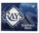 Rico Industries Tampa Bay Rays Car Flag