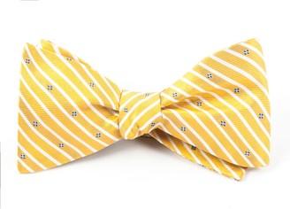 Tie Bar Arbor Stripe Yellow Bow Tie