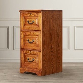 Southview 3-Drawer Vertical File Darby Home Co Finish: Dark Oak