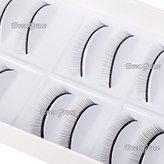 10Pairs Makeup Practice Eyelashes Extension For Beginner Teaching Strip Eye Lash