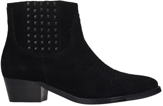 Bibi Lou Low Heels Ankle Boots In Black Suede