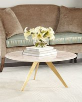 Arteriors Scarlett Blush Agate Coffee Table