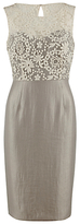 Gina Bacconi Daisy Chain Embroidered Mesh Dress, Pearl