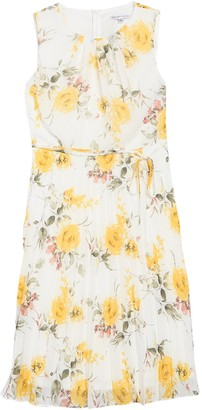 Sandra Darren Chiffon Floral Sleeveless Dress