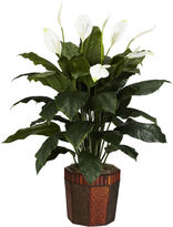 Asstd National Brand Nearly Natural Spathiphyllum Silk Plant with Vase