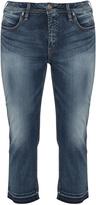 Silver Jeans Plus Size Slim fit jeans