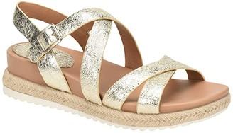 Sofft Beechwood (Platinum Frizzy Metallic) Women's Shoes