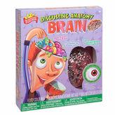 SCIENTIFIC EXPLORER Scientific Explorer Disgusting Anatomy Of Brain Science 9-pc. Discovery Toy