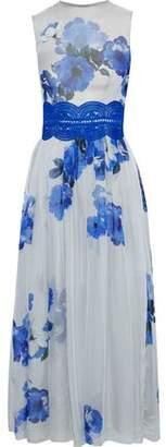 Costarellos Guipure Lace-trimmed Floral-print Chiffon Midi Dress