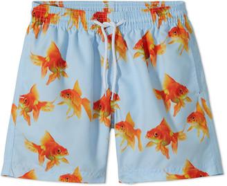 Stella Cove Boys' Goldfish Swim Trunks, 12M-10