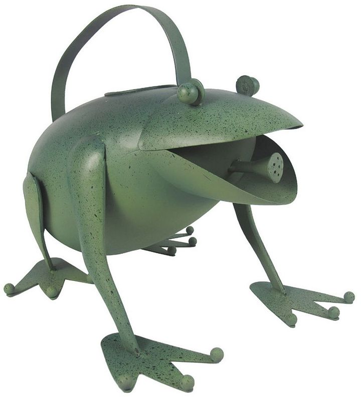 Sonoma life + style ® frog watering can