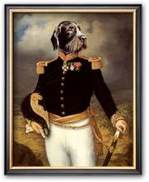Art.com ''Ceremonial Dress'' Framed Art Print by Thierry Poncelet