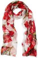 Dolce & Gabbana Floral-print Silk-chiffon Scarf - Red