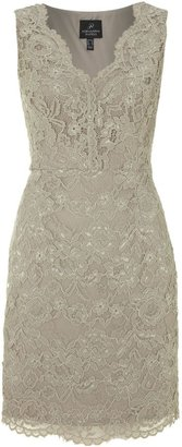 Adrianna Papell V neck lace detail dress