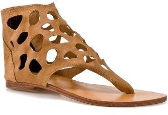 Cocobelle Safari Sandal