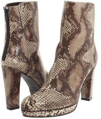 Stuart Weitzman Edgeoff (Taupe Painted Snake) - Footwear