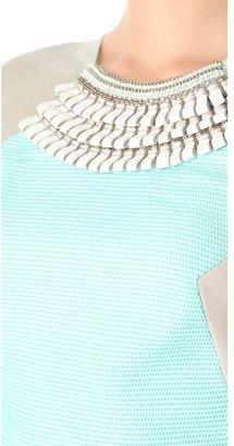 Matthew Williamson Sheer Panel Dress