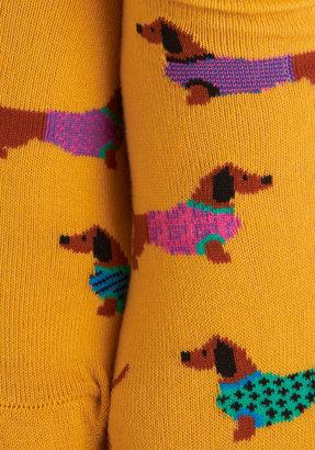 Gold Medal Wiener Dog Socks