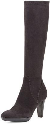 Aquatalia Rhumba Stretch Suede Knee Boot, Charcoal