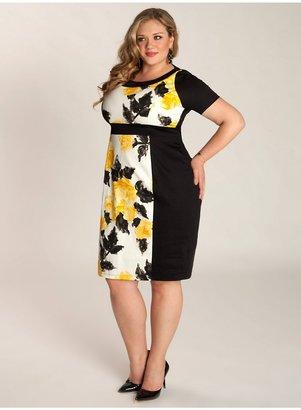 IGIGI Paige Plus Size Dress