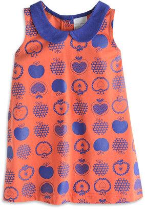 Pumpkin Patch Knit Shift Dress