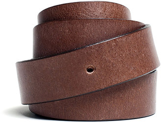 Everlane The Essential Belt