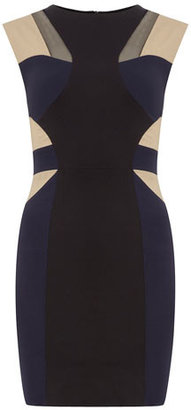 Dorothy Perkins Colour block bodycon dress