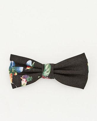 Le Château Floral Cotton Bow Tie