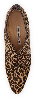 Manolo Blahnik Aguila Calf Hair Ankle Boot