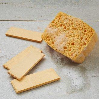 west elm Haven Pop-Up Sponge Set