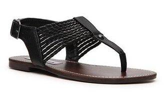 Steve Madden Stark Flat Sandal